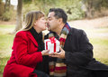 Kissing mixed race couple give christmas or valentines day gifts young attractive sharing gift in the park Royalty Free Stock Photography