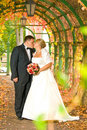 Kissing wedding couple Stock Photography
