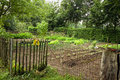 Kitchen garden in the country vegetable with fence next to a farm summer Stock Photography