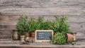 Kitchen Herbs With Chalkboard....