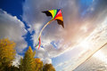 Kite flying in a sky Royalty Free Stock Photo