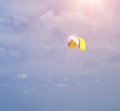 Kite in Sky Stock Image