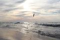 Kite surfer sea landscape with lone Royalty Free Stock Photos