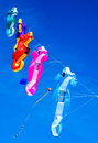 Kites flying over Treasure Island Beach, Florida Royalty Free Stock Photo