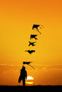 Kites vendor at sunset