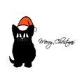 Kitten with big eyes in a Santa hat