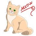 Kitten cheerful beige, cartoon on a white background.