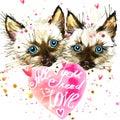 Kitten. Cyte kitten and Valentines day heart.