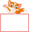 Kitten Place Card Royalty Free Stock Image