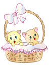 Kittens in Basket Royalty Free Stock Photo