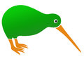 Kiwi bird vector illustration of green Royalty Free Stock Photography