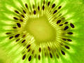 Royalty Free Stock Photos Kiwi Fruit