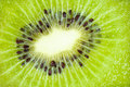 Kiwi fruit close up background closeup of juicy chinese gooseberry Royalty Free Stock Photography