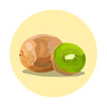 Kiwi fruit illustration yellow circle Royalty Free Stock Image