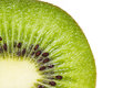 Kiwi fruit isolated close up on white background Royalty Free Stock Photos