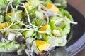 Kiwi fruit , mango and  lettuce  salad Royalty Free Stock Photo