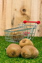 Kiwi fruit and shopping cart on a lawn Royalty Free Stock Images