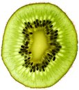 Kiwi fruit slice isolated on white Stock Images