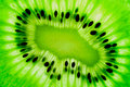 Kiwi fruit  slice on a light table Stock Photo