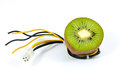 Kiwi fruit on top of wires Royalty Free Stock Photo