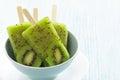 Kiwi Ice Cream Popsicle Stock Photography