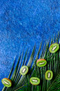 Kiwi and palm branch on blue background top view copyspace