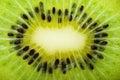 Kiwi slice closeup Royalty Free Stock Photo