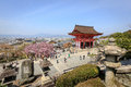 Kiyomizu temple and cherry blossom in kyoto with sakura japan the picture was taken during sakura spring located on the Royalty Free Stock Image