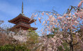 Kiyomizu temple and cherry blossom in kyoto with sakura japan the picture was taken during sakura spring located on the Stock Photo