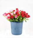 Kleurrijke die rozen in mand op wit wordt geïsoleerd Royalty-vrije Stock Foto