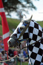 Knight on horseback the red of old horse back jousting in full armour Stock Images