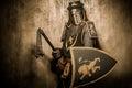Knight with mace Royalty Free Stock Photo