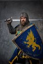 Knight with a sword and shield Stock Photos