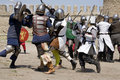 Knightly fight Royalty Free Stock Photo