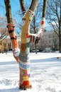 Knitted tree winter park vilnius lithuania Stock Photography