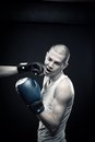 Knock out Stock Photography