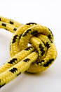 Knot with clipping path Royalty Free Stock Photo
