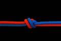 Knot on a cord Royalty Free Stock Photo