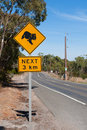 Koala sign roadside warning of koalas being in area Royalty Free Stock Image