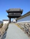 Kochi castle Japan Royalty Free Stock Photo