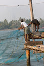 Kochin india february fishermen on the city port on februar in indian using traditional chinese network Royalty Free Stock Photography