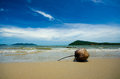 Koh chang coconut island sea trad thailand Royalty Free Stock Images