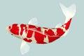 Koi Fish Royalty Free Stock Photo