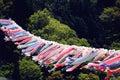Koinobori - 鲤のぼり- 鲤鱼旗 Royalty Free Stock Photo