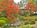 Koko-en Garden in autumn at Himeji, Hyogo Prefecture, Japan. Royalty Free Stock Photo