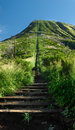 Koko Head hiking trail Royalty Free Stock Photo