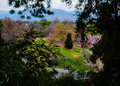 Kolorowe krajobrazu Fotografia Stock