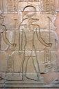 Kom ombo crocodile god sobek portrait of in temple esna egypt Royalty Free Stock Images