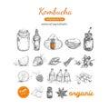 Kombucha homemade tea collection.