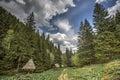 Kopaonik mountain in Serbia Royalty Free Stock Photo